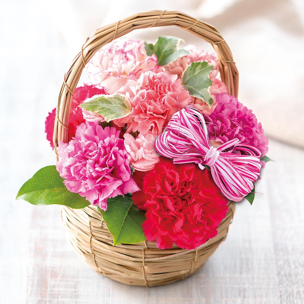 花鉢・アレンジメント