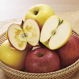 《ハロートーク》 信州産 赤黄りんご詰合せ(サンふじ&シナノゴールド) 約5kg