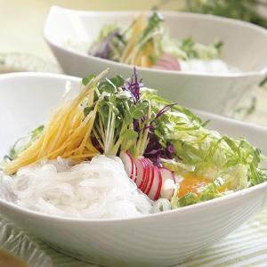 《ハロートーク》 サラダで食べる極細こんにゃく麺セット中華しょうゆタレ・ごまタレ 2種 計10袋