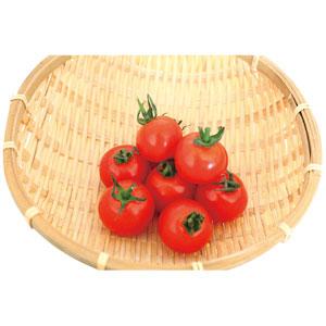 《ハロートーク》 よりどり企画 ミニトマト 1パック