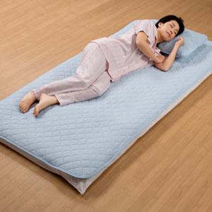 《ハロートーク》 〈東洋紡〉高分子ポリエチレン使用涼感クールワッフル枕パッド2枚組