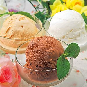 ≪ガレー≫プレミアムアイスクリームセット ★(冷凍)