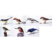 <東急百貨店>【野鳥シリーズ】日本の野鳥画像