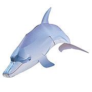 <東急百貨店>【すぐできる海のなかまたち1】バンドウイルカ