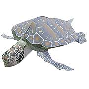 <東急百貨店>【すぐできる海のなかまたち2】アオウミガメ